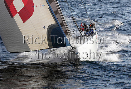 LepTrans08-0225 